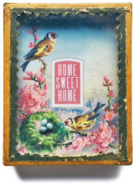 Cathe-Holden-Bird-Box