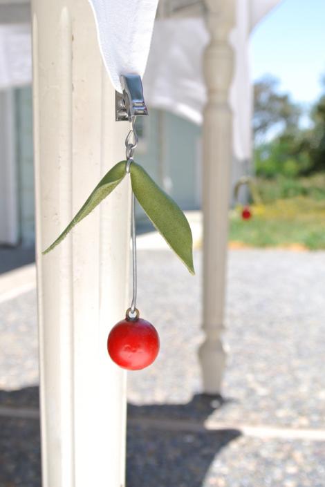Cathe-Holden-Cherries-Weights-17