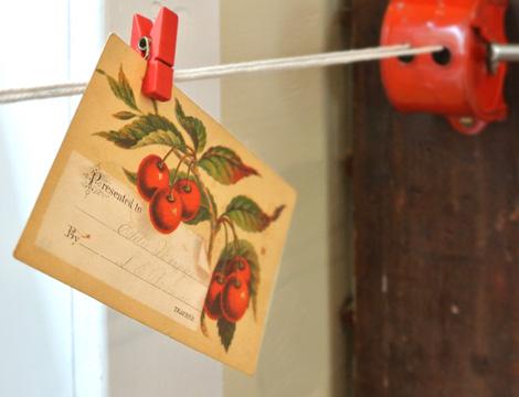 Cherries-CH-WL-Postcard