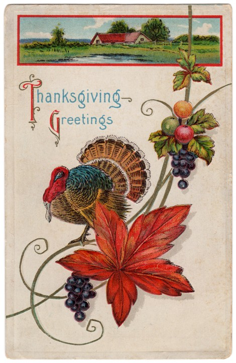 JSIM-Cathe-Holden-Thanksgiving-Postcard02
