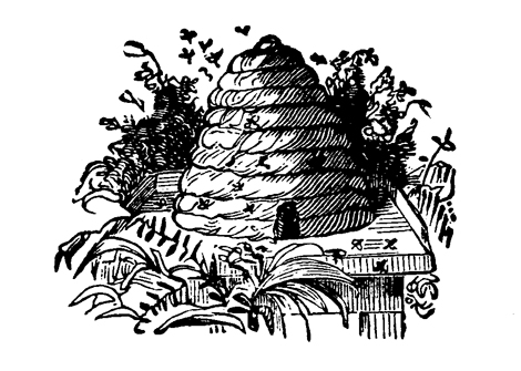 Bees and Beehives: Free Digital Downloads and Clip Art | Cathe ...